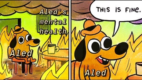 "(dog inside burning room meme, with the text ""Aled's mental health"" over the fire) dog (with text ""Aled"" over it): This is fine."